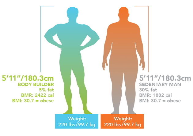 average body fat percentage per age