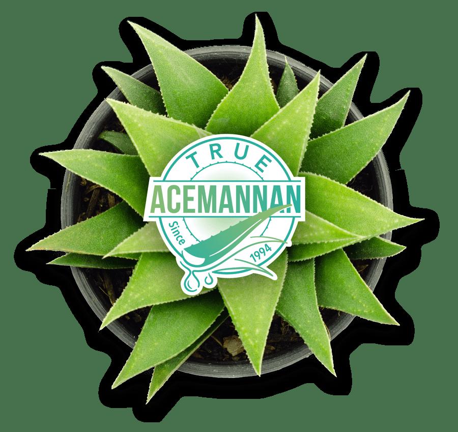 True Acemannan